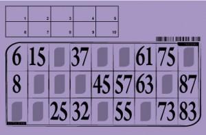 Lottokarten mit Kontrolle  10 Stück