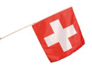 Stabfahne Schweiz 58x58cm