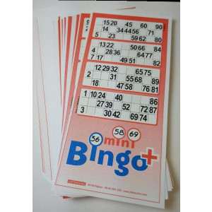 Mini-Bingo 4 Tickets