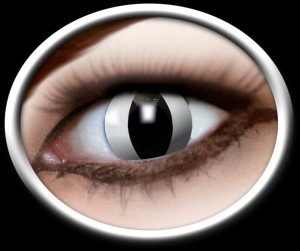 Kontaktlinsen schwarze Katze