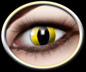 Kontaktlinsen gelbe Katze